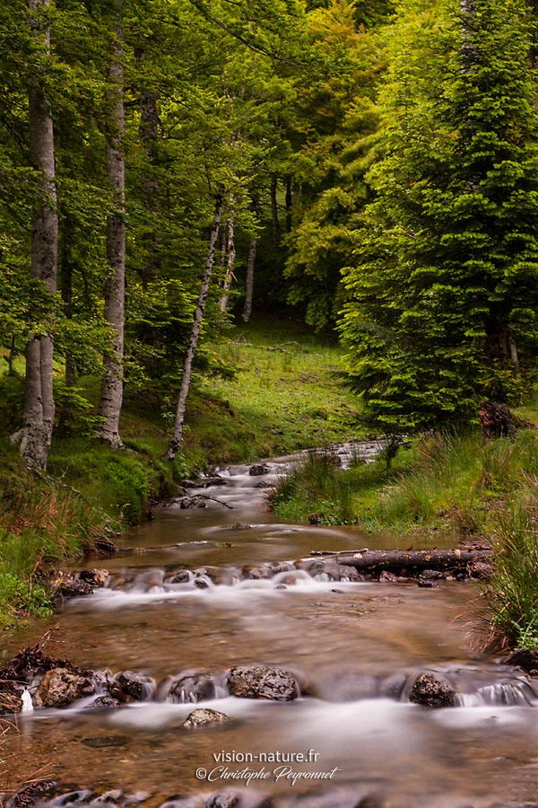Ruisseau du Massif d'Irati, Pays Basque
